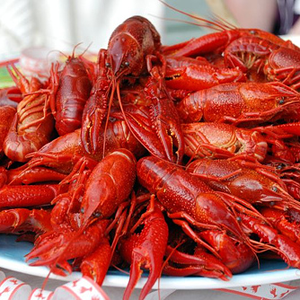 CRAWFISH_photo