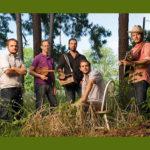 Pine-Leaf-Boys_image